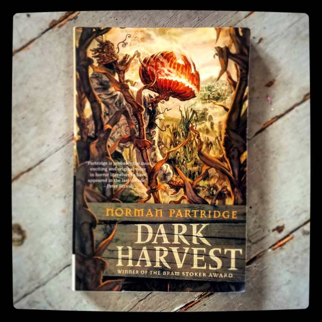 Dark Harvest: The October Boy Is Coming To Celebrate Halloween With You-Find Out The Release Date